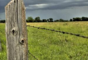 santa rosa fence post